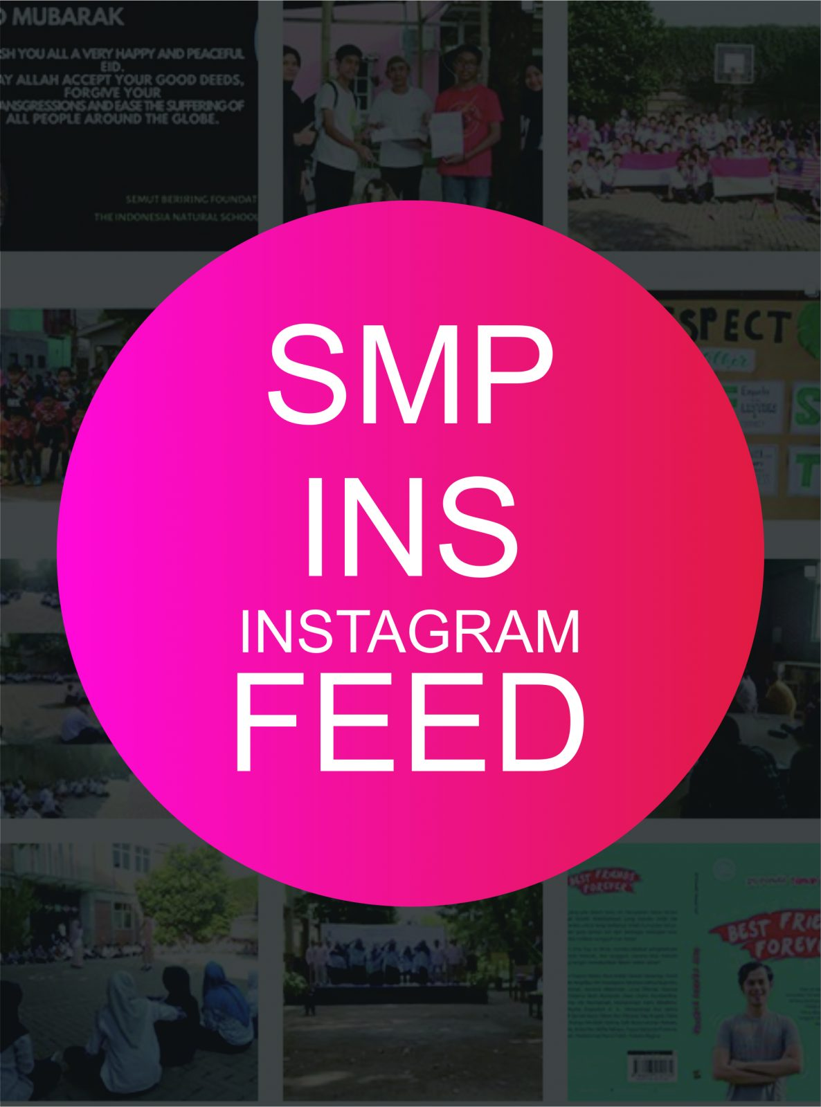smp ins instagram feed